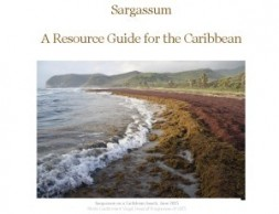 Sargassum Resource Guide For the Caribbean