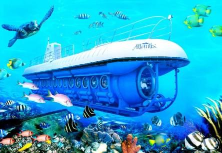 Submarine Day Dive - Tour Image 12